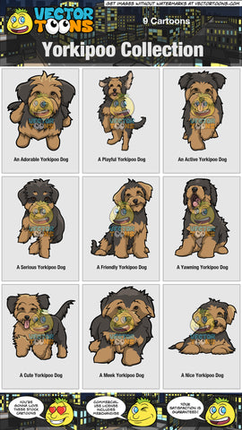 Yorkipoo Collection