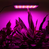 200W Reflector Cup Full Spectrum LED Grow Light