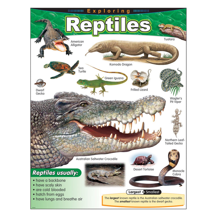 T38181 Learning Chart Exploring Reptiles