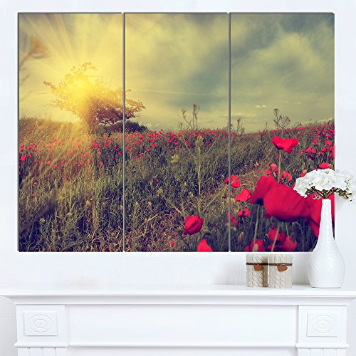 Designart PT14911-3P Vintage Photo of Poppies at Sunset Modern Flower Canvas Wall Artwork, 36x28""