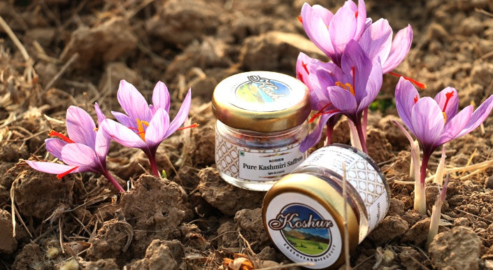 Koshur proudly announces housing the world purest and 100% certified Kashmiri Saffron, freshly handpicked and packed to give you the best experience.
