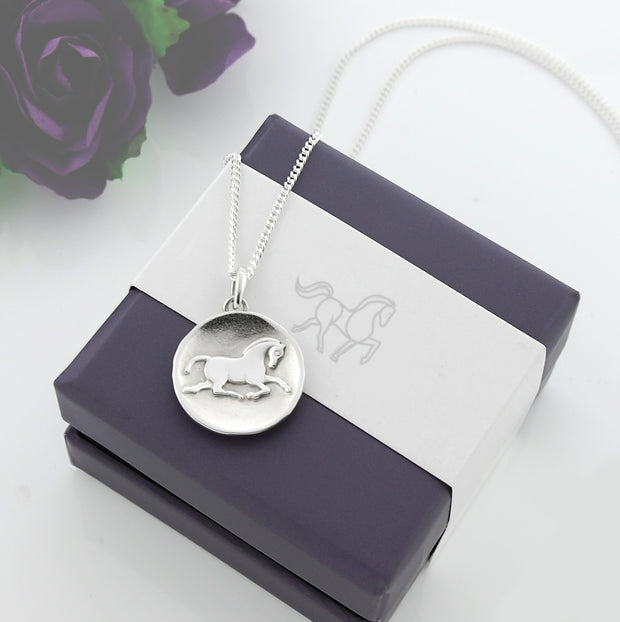 Designer solid silver horse inspired coin necklace displayed on Sylvia kerr Jewellery presentation box.