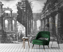 Load image into Gallery viewer, Perfect Ruin Mural