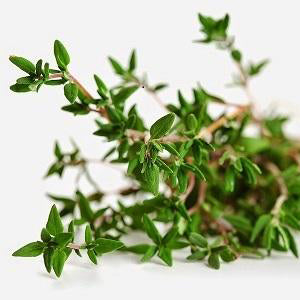Angel's Mist Thyme Essential Oil