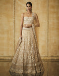 A107 Embroidered Kalidar Lehenga With Lace Blouse & Dupatta-STYLIZONE