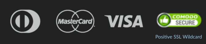 Point 65 Sweden Secure Accepted Payment Methods Visa Mastercard Footer