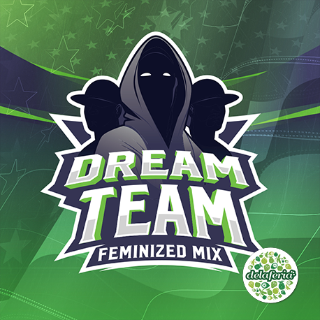 Dream Team Feminized Mix