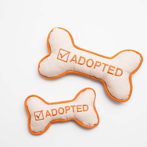 I'm Adopted Dog Toy