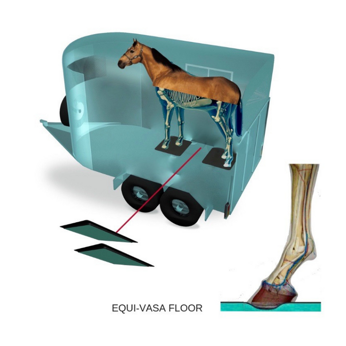 EQUI-VASA FLOOR (Vibration And Shock Absorption)