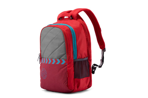 2490c51875e8 Top 4 College Bags by Harissons to Buy in 2019 | HarissonsBags