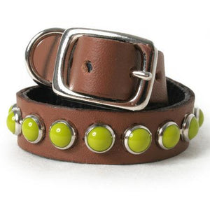 Retro Green on Chestnut Leather Dog Collar