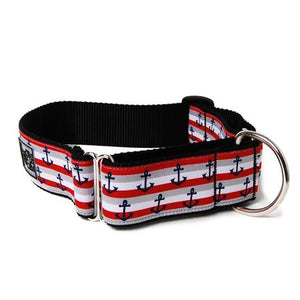 Nautical Dog Training Collar
