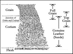 Shoe Leather 101 - An Overview