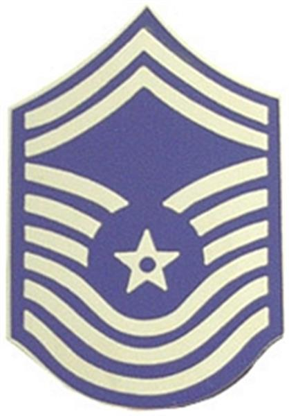 USAF E-9 CMSgt Small Hat Pin