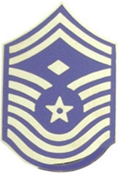 USAF E-9 1st Sgt Small Hat Pin