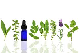 Aromatherapy, Not Aromacology