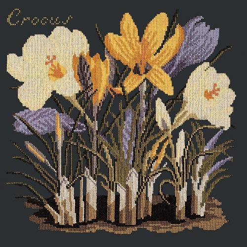 Crocus Needlepoint Kit Elizabeth Bradley Design Black