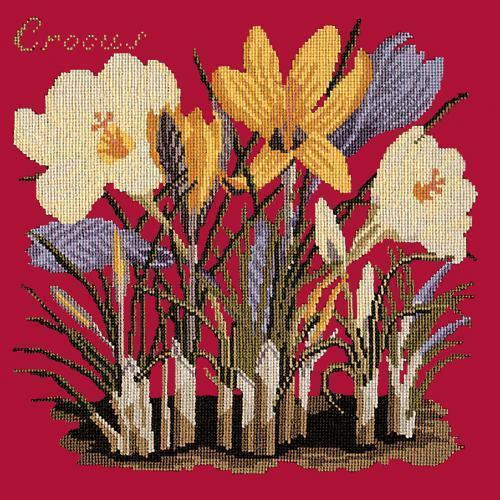 Crocus Needlepoint Kit Elizabeth Bradley Design Bright Red