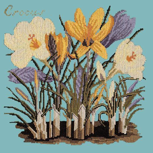 Crocus Needlepoint Kit Elizabeth Bradley Design Duck Egg Blue