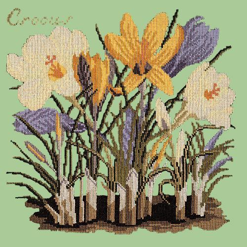 Crocus Needlepoint Kit Elizabeth Bradley Design Pale Green