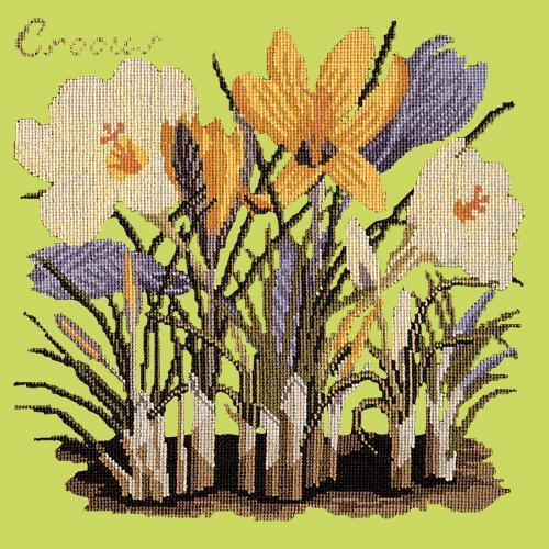 Crocus Needlepoint Kit Elizabeth Bradley Design Pale Lime