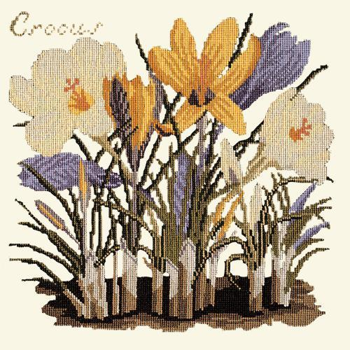 Crocus Needlepoint Kit Elizabeth Bradley Design Winter White