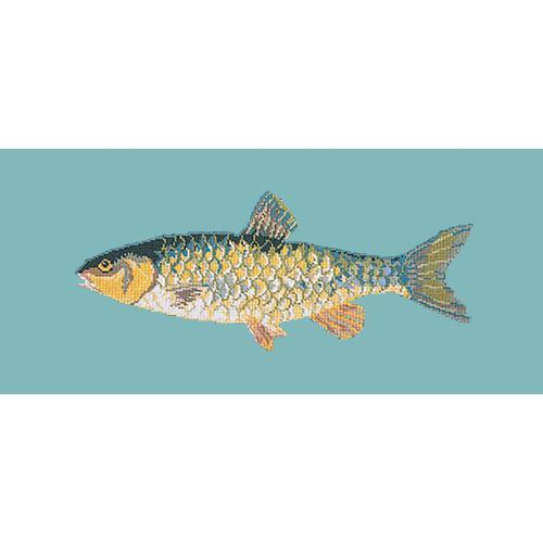 Freshwater Chub Needlepoint Kit Elizabeth Bradley Design Duck Egg Blue