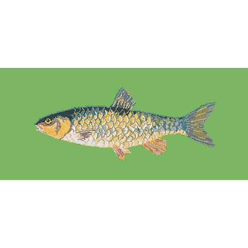 Freshwater Chub Needlepoint Kit Elizabeth Bradley Design Grass Green