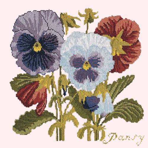 Pansy Needlepoint Kit Elizabeth Bradley Design Cream