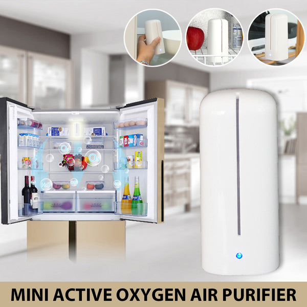 USB Portable Mini Air Purifier for Refrigerator, Closet & Outdoor, Reduce Odor, Mold Smoke & Dust