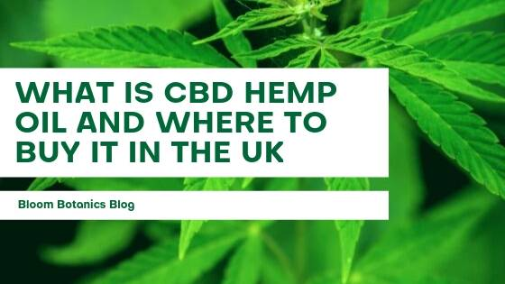 What Is CBD Hemp Oil and Where to Buy it in the UK