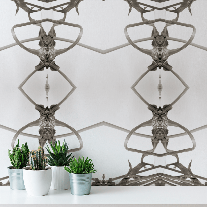Wonderland - Trendy Custom Wallpaper | Contemporary Wallpaper Designs | The Detroit Wallpaper Co.