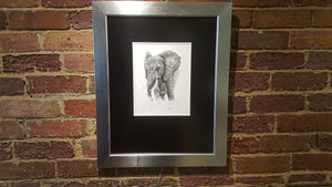 """Gentle Giant"" framed 8X10 print unsigned"