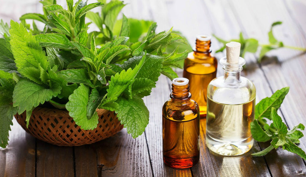 |peppermint-oil-leaves-bottle||peppermint-oil-uses-benefits-skin-health|Peppermint-plant|peppermint-oil-diffuser-health-skin-benefits|peppermint-oil-feature