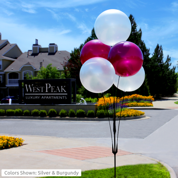Premium 5-Balloon Cluster - Apartment Promotion