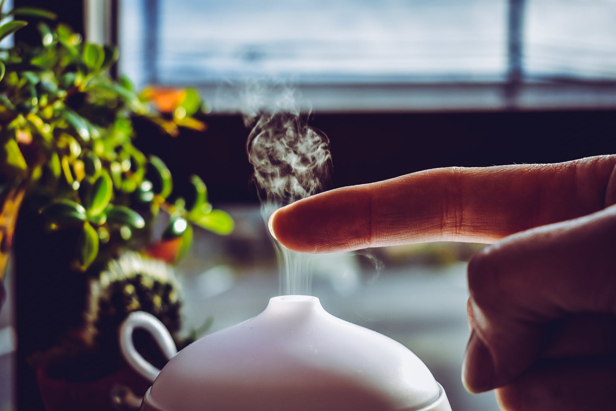 Cool Mist vs Warm Mist: Which Type of Humidifier should You Buy?