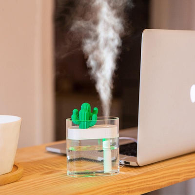 Clear Cactus Air Humidifier Running
