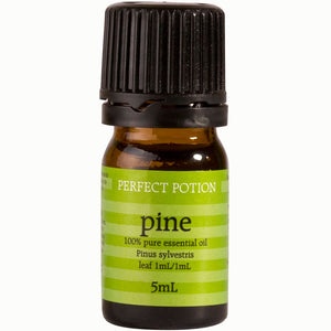 Pine 100% Pure & Certified Organic Essential Oil - Perfect Potion