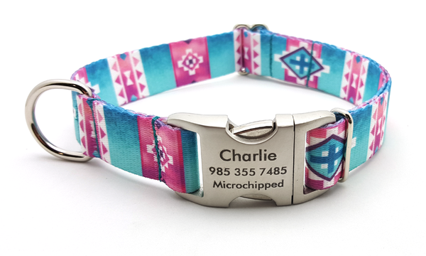 Albuquerque Polyester Webbing Dog Collar with Laser Engraved Personalized Buckle
