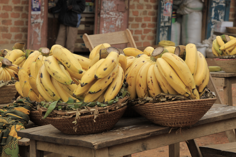 yellow plantains in baskets at the market