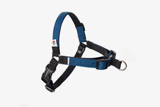 Linden No Pull Dog Harness / Navy