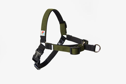 Linden No Pull Dog Harness / Olive