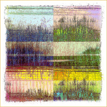 Load image into Gallery viewer, Urban Grasses In Color