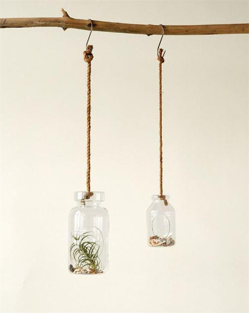 Glass Hanging Terrarium with Jute Rope