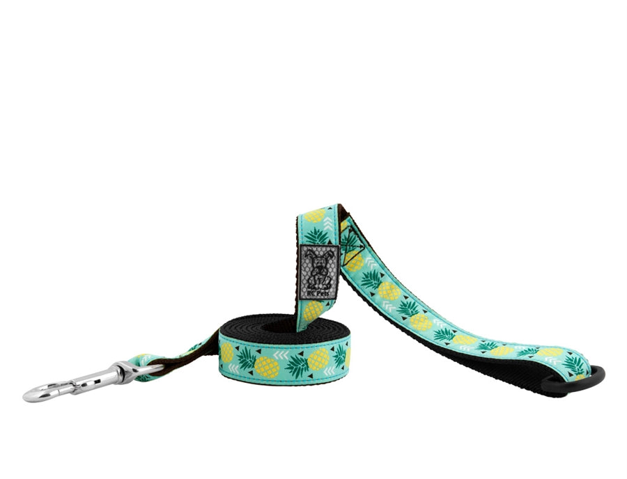 RC Pet Pineapple Parade Leash