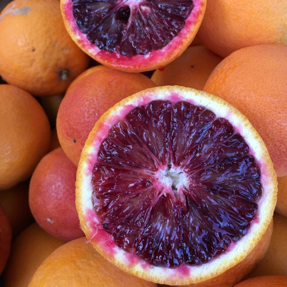 Organic & Biodynamic Blood Orange from La Vigne