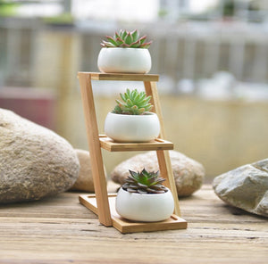 3 Tier Bamboo Shelf with White Ceramic Pots