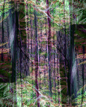 Load image into Gallery viewer, Tera Tee Forest Print 'The Black Spur' #5