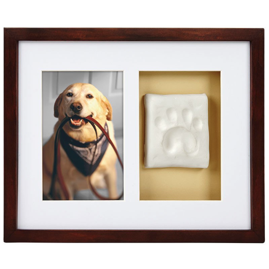 pawprints wall frame