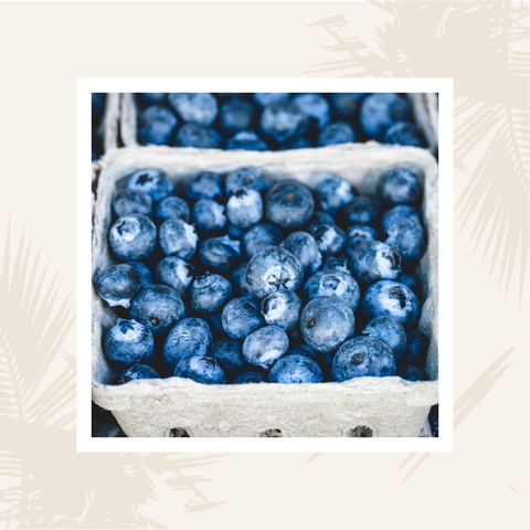 blueberries_mroze_superfoods